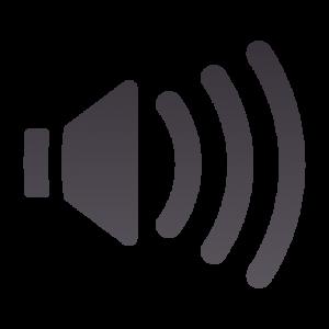 audio-volume-medium-panel